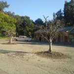 Motel  Mibion Bay San Diego